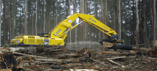 Forestry Industry Engineering and Maintenance